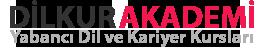 Dilkur Akademi